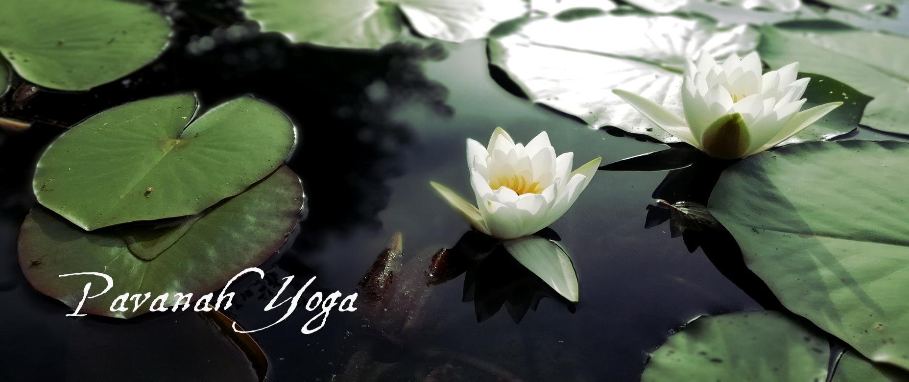 Pavanah yoga